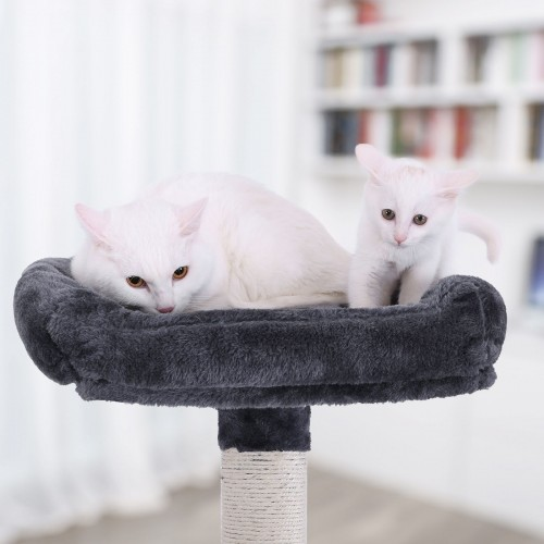 Single Platform Cat Tree