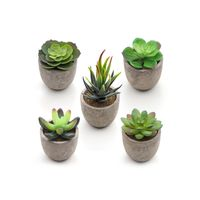 Artificial Potted Succulents